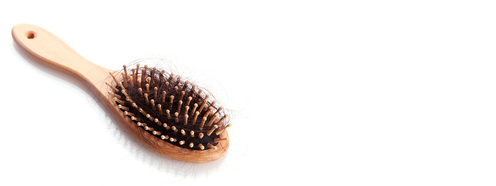 bundle of hair on a hairbrush
